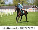 Small photo of Caliburn (IRE) ridden by Josephine Gordon and trained by Hugo Palmer on the track prior to the Novice Stakes at Thirsk Races : Thirsk Racecourse, North Yorkshire, UK : 8 May 2018