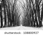 tree black silhouettes and... | Shutterstock . vector #108800927