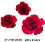 Stock photo a set of flower of roses isolated on white 108814301