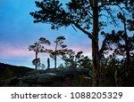 man in silhouette between pine...   Shutterstock . vector #1088205329