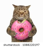 Stock photo the cat holds a big pink bitten donut white background 1088220197
