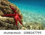 most beautiful mediterranean... | Shutterstock . vector #1088267795