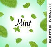 flying green mint leaves on... | Shutterstock .eps vector #1088328944