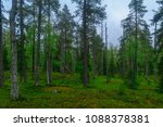 trees and forest along the... | Shutterstock . vector #1088378381