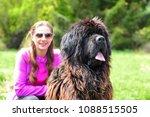 huge newfoundland dog  detail... | Shutterstock . vector #1088515505