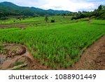 thailand in green season   Shutterstock . vector #1088901449