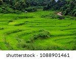 thailand in green season   Shutterstock . vector #1088901461