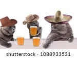funny cowboy cats and mexican... | Shutterstock . vector #1088933531