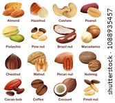 nut types with signed names... | Shutterstock . vector #1088935457