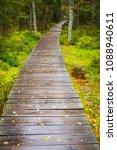path in woods   rejviz  czech... | Shutterstock . vector #1088940611