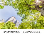 fresh green and buildings in... | Shutterstock . vector #1089002111