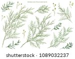 floral set. watercolor greenery.... | Shutterstock . vector #1089032237
