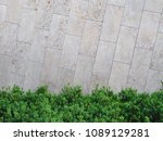 green bush in front of the... | Shutterstock . vector #1089129281