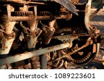 quorn south australia  closeup... | Shutterstock . vector #1089223601