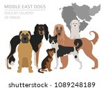 dogs by country of origin. near ... | Shutterstock .eps vector #1089248189