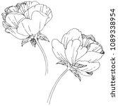 wildflower peony flower in a... | Shutterstock .eps vector #1089338954