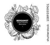bergamot vector drawing frame.... | Shutterstock .eps vector #1089355901