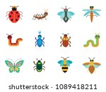 insects icon set. ladybird bee... | Shutterstock .eps vector #1089418211