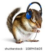 Funny Chipmunk Listening To...