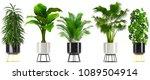 3d illustration of tropical...   Shutterstock . vector #1089504914