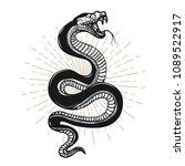 snake illustration on white... | Shutterstock .eps vector #1089522917