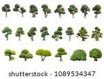 tako trees bending.isolated...   Shutterstock . vector #1089534347