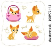set of little chihuahua. | Shutterstock .eps vector #108973445