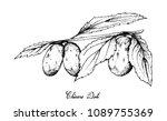 tropical fruit  illustration of ... | Shutterstock .eps vector #1089755369