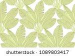 palm tree leaves pattern....   Shutterstock .eps vector #1089803417