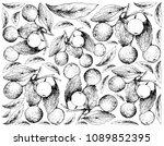 tropical fruit  illustration... | Shutterstock .eps vector #1089852395