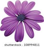 osteospermum purple flower macro | Shutterstock .eps vector #108994811