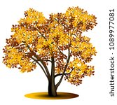 detached tree with yellow... | Shutterstock .eps vector #1089977081
