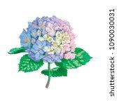 beautiful gentle hydrangea... | Shutterstock .eps vector #1090030031