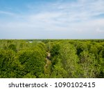 mangrove forest view from above ... | Shutterstock . vector #1090102415