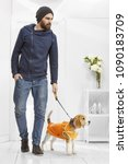 Small photo of Full length portrait of a young handsome man with Beagle in a hoodie tank top, on leash in the white room. The guy with beard, in a beanie, standing, one hand in his pocket, looking to the side.