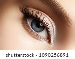 beautiful macro shot of female...   Shutterstock . vector #1090256891