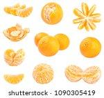 collection of fresh mandarins...   Shutterstock . vector #1090305419
