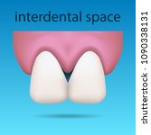 dental illustration showing...   Shutterstock .eps vector #1090338131