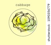cabbage icon or logo in flat...   Shutterstock .eps vector #1090356779