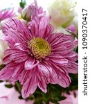 flowers as a background | Shutterstock . vector #1090370417
