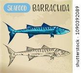 ray finned barracuda sketch.... | Shutterstock .eps vector #1090392089