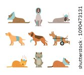 cats and dogs get sick  injured ... | Shutterstock .eps vector #1090473131