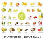 delicious exotic fruits full of ... | Shutterstock .eps vector #1090556177