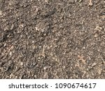 finished compost closeup | Shutterstock . vector #1090674617