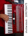 Small photo of Accordionist playing accordion in popular Brazil party
