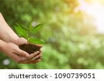 hands holds plant  eco concept | Shutterstock . vector #1090739051