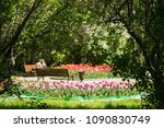 park in the city | Shutterstock . vector #1090830749