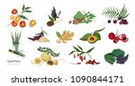 collection of elegant botanical ... | Shutterstock .eps vector #1090844171