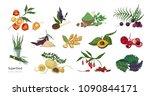 collection of elegant botanical ... | Shutterstock .eps vector #1090844171