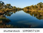a branch of the murray river ...   Shutterstock . vector #1090857134